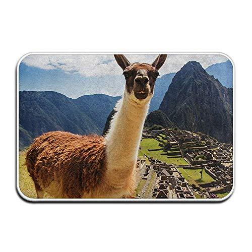 Beigehome Doormats Indoor Entrance 23.6 x 15.7 Inches Lama Machu Picchu Floor Mats for Shoe Scraper Rug Outdoor Bathroom Carpet