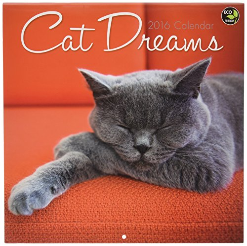 Cat Dreams Wall Calendar by TF Publishing 2016