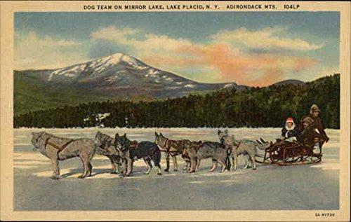Dog Team on Mirror Lake - Adirondack Mountains Lake Placid, New York Original Vintage - Lake Mirror Adirondacks