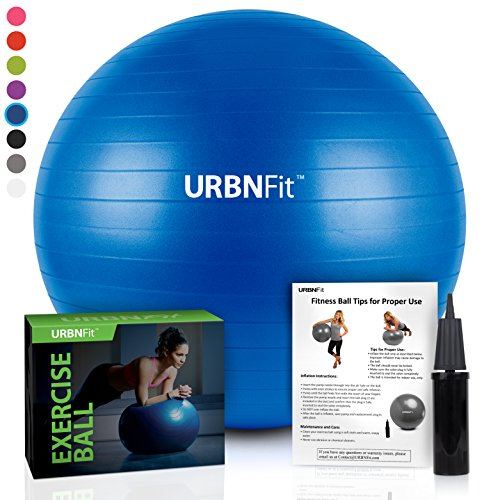 Exercise Ball (65 CM) for Stability & Yoga - Workout Guide Incuded - Professional Quality (Blue)