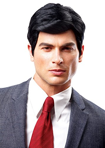 Costume Culture Men's Real Man Wig, Black, One Size (Male Costume Halloween)
