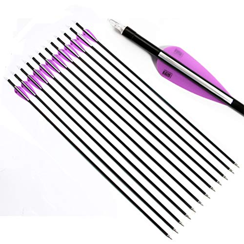 "PG1ARCHERY 31 Inch Fiberglass Hunting Arrows, 12 Pack Archery Target Practice Arrow with Removable Broadheads Fletching 3"" Vanes for Compound & Recurve Bow (White Purple)"