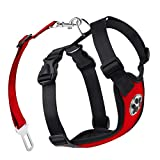 1Anberi Dog Harness with Car Seat Belt, Breathable Mesh Fabric Dog Vest Harness with Dog Safety Seat Belt for Car (Large, Red)