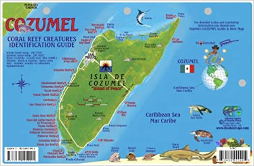 Cozumel Dive Map Reef Creatures Guide Franko Maps Laminated Fish - Amazon maps
