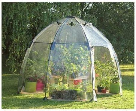 Burbuja de Invierno 6 m²: Amazon.es: Jardín