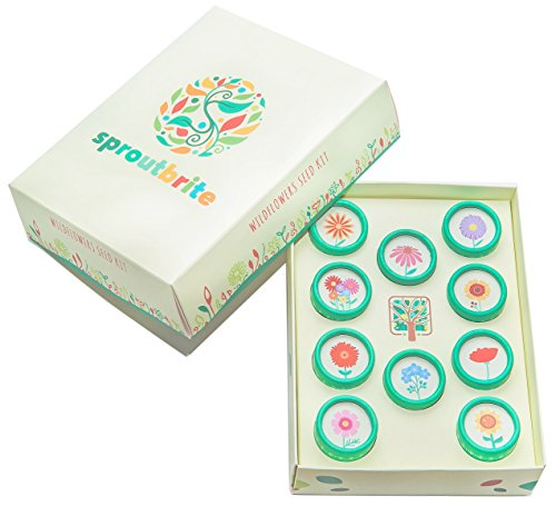 sproutbrite-wildflowers-seed-kit-for-home-gardening-including-easy-to-grow-varieties-in-a-colorful-g