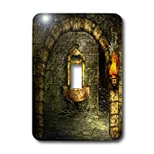 3dRose LLC lsp_11908_1 A Medieval Room Features An Enchanted Fountain As A Torch Burns Nearby, Single Toggle Switch