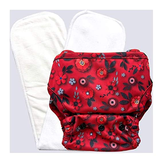 Bumpadum One Size Stay-Dry Reusable Economical Cover Diaper with Stay Dry Organic Cotton Insert (Eden)