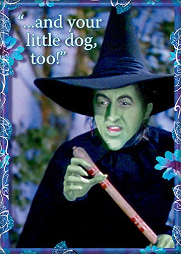 Ata-Boy Wizard of Oz Wicked Witch of The
