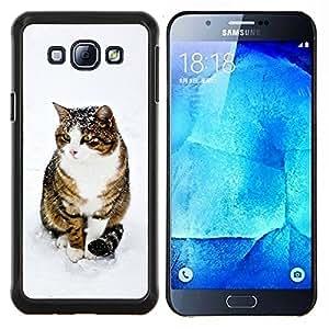 Caucho caso de Shell duro de la cubierta de accesorios de protección BY RAYDREAMMM - Samsung Galaxy A8 A8000 - Gato lindo de la nieve