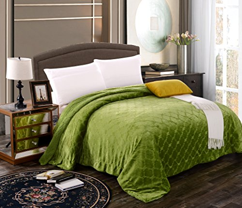 Mk Collection Queen/King Embossed Blanket Bedspread Modern Solid Color With Sherpa Backing Reversible Bed Cover New (LIME GREEN)