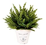Creative Displays Green Heather In French Embellished Clay Container
