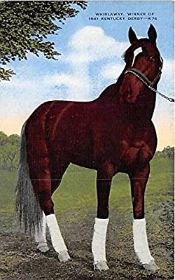 Whirlaway, Winner of 1941 Kentucky Derby Kentucky, KY, USA Old Vintage Horse Racing Postcard Post Card
