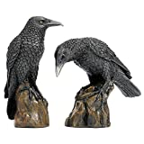 Design Toscano Mystic Night Raven Statues
