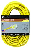 Southwire 25890002 2589SW0002 Outdoor Cord-12/3 American Made SJTW Heavy Duty 3 Prong Extension Cord, Water Resistant Vinyl Jacket, for Commercial Use and Major Appliances, Foot, 100 Feet, Yellow
