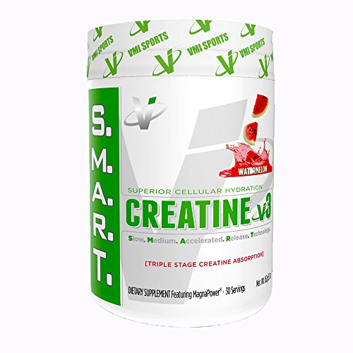 VMI Sports S.M.A.R.T. Creatine V3 Supplement, Watermelon, 162 Gram