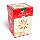 Keystone 50000led Holiday Porch Star Christmas Decoration, Clear (Gold & White)