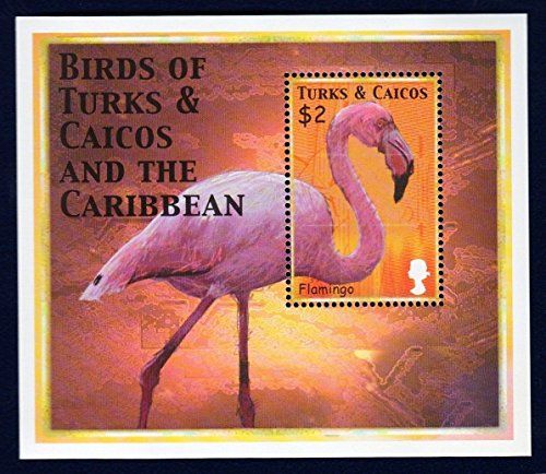 Birds of the Caribbean (Flamingo) Collector's Stamp - Turks And Caicos Birds