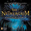The Nethergrim Audiobook by Matthew Jobin Narrated by Jeremy Arthur