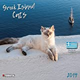 Greek Island Cats 2019 Wall Calendar