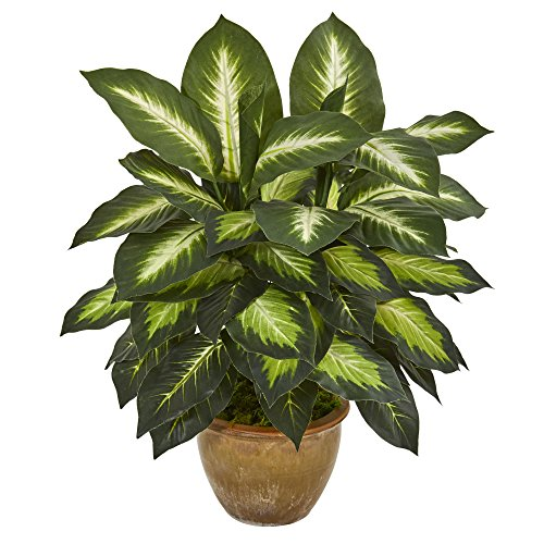 Nearly Natural Dieffenbachia Ceramic Planter Artificial Plant, Green
