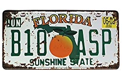 """Florida B10 Asp Sunshine State Vintage Auto License Plate, Embossed Tag Size 6"""" X 12"""""""