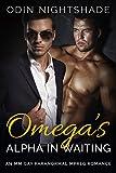 Omega's Alpha in Waiting: An MM Gay Paranormal Mpreg Romance