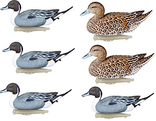 Flambeau Classic Pintail Duck Decoy - 6 Pack