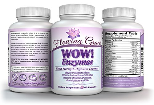 WOW! Enzymes Extra-Strength Digestive En…