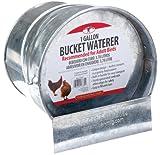 LITTLE GIANT Galvanized Bucket Waterer