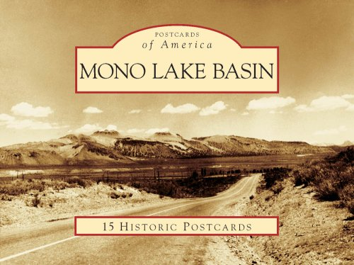 Mono Lake Basin (Postcards of America: California) pdf epub