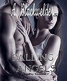 Falling Angels (YA Manhattan Urban Angel Suspense) (Hush Hush meets Twilight): AngelFire Chronicles