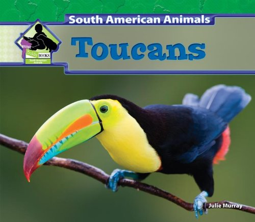 Toucans (South American Animals)