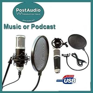 post audio professional recording or podcast setup usb condenser mic with shock. Black Bedroom Furniture Sets. Home Design Ideas