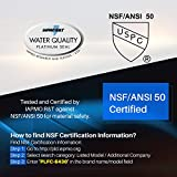 POOLPURE NSF-50 Certified Spa Filter Replace