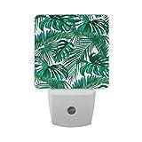 JOYPRINT Led Night Light Tropical Palm Leaves Hawaii, Auto Senor Dusk to Dawn Night Light Plug in for Kids Baby Girls Boys Adults Room