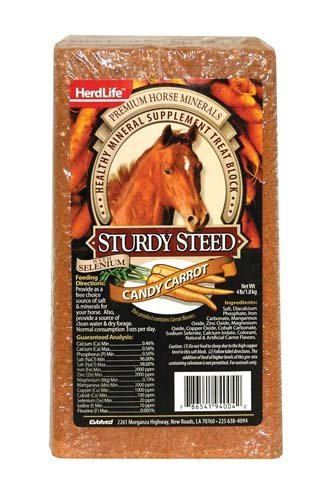 Sturdy Steed Carrot Horse Block by Evolved Habitat