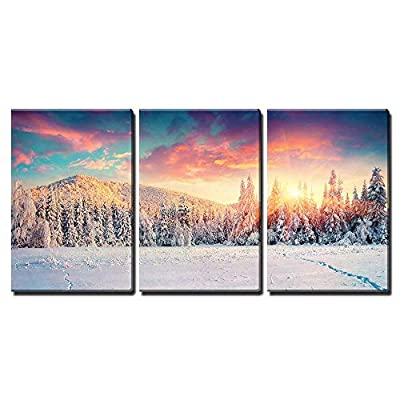 Colorful Winter Panorama in The Carpathian Mountains Fir...24