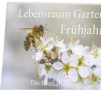 Postkartenbuch Lebensraum Garten Frühjahr Amazonde Bürobedarf