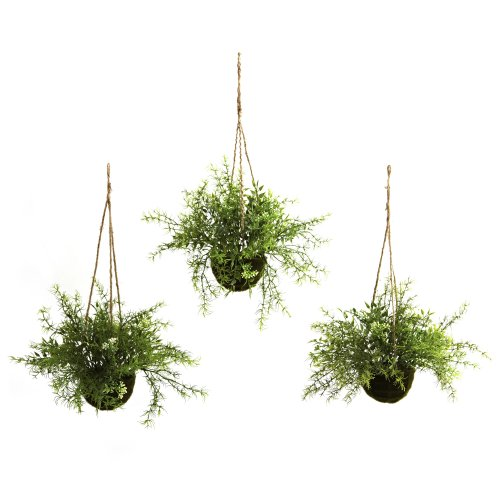 Nearly Natural 6742S3 Ruscus Sedum Springeri Hanging Basket Green Set of 3