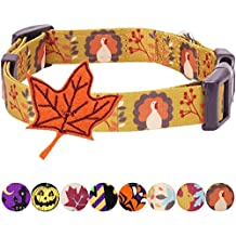 """Blueberry Pet 8 Patterns Thanksgiving Fall Festival Moonlit Turkey Designer Dog Collar with Maple, Small, Neck 12""""-16"""", Adjustable Collars for Dogs"""