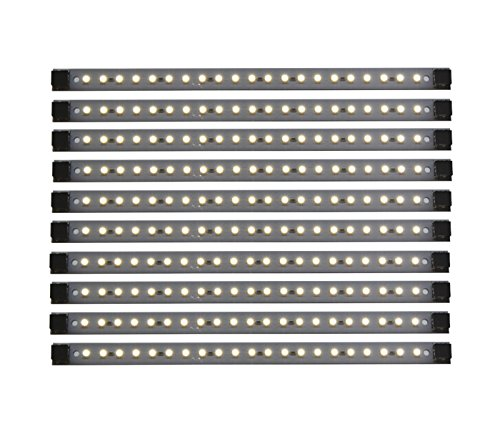 Led Cove Lighting Ideas in Florida - 4