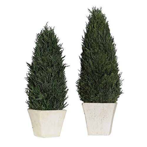 My Swanky Home Classic Cypress Evergreen Topiary Set 2 Cone Pyramid Stone Pot Greenery European