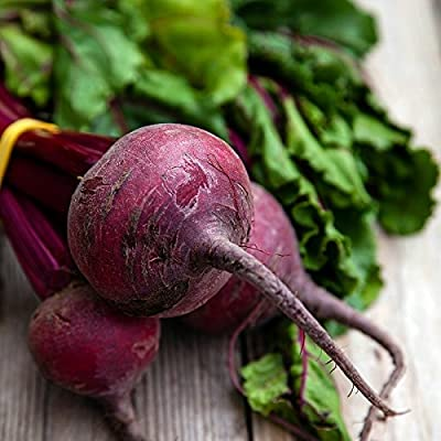 "Beet Seeds (Organic) - ""Detroit Dark Red"""