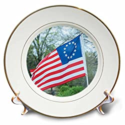 3dRose Danita Delimont - Flags - USA, South Carolina, Camden, Historic Camden, Betsy Ross flag - 8 inch Porcelain Plate (cp_259986_1)