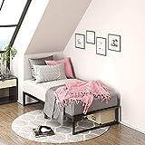 Zinus Lorelei 12 Inch Platforma Metal Bed