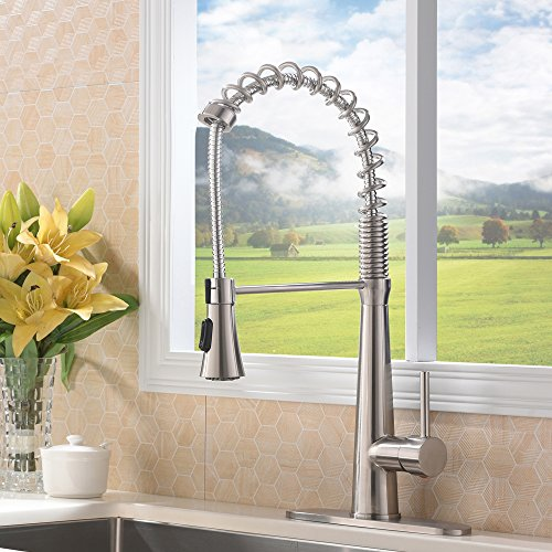 VAPSINT High-Arch 360 Degree Lead-Free Spring Brushed Nickel Single Handle Kitchen Faucet, Pull Out Kitchen Sink Faucet (With Deck Plate)