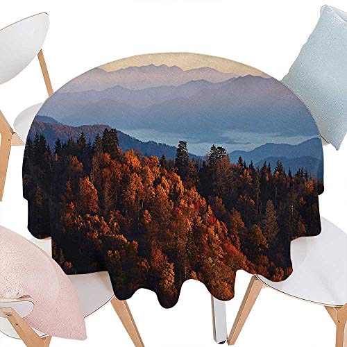 National Parks Dinning Round Tabletop DecorSunrise at The Mountains Pine Trees Covered on Hill Mist South Carolina Round Table Cover for Kitchen D54 Multicolor