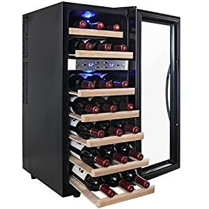 AKDY 21 Bottle Dual Zone Thermoelectric Freestanding Wine Cooler Cellar Chiller Refrigerator Fridge Quiet Operation – Nice wine cabinet