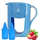 zen water pitcher - Alkaline Water Pitcher with Two 6-Stage Carbon Water Filters - Removes Chlorine and Contaminants Plus Increases pH (Blue)